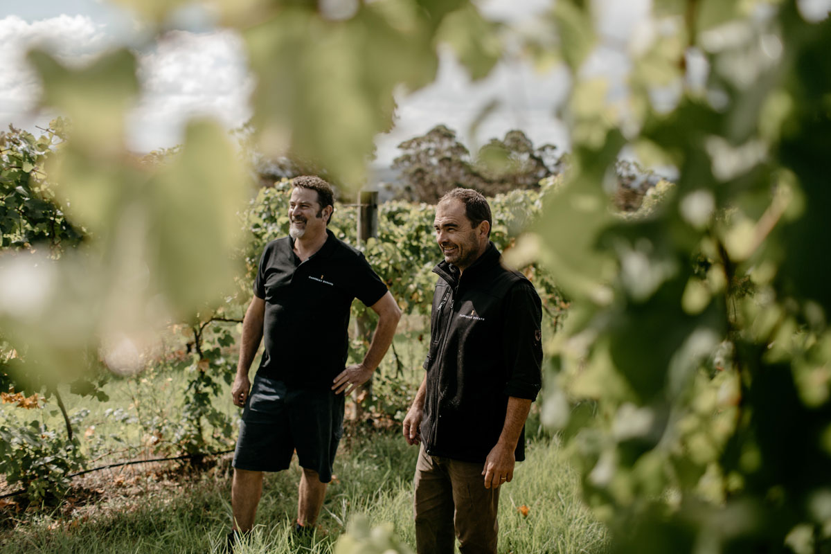 Castelli Estate winemakers