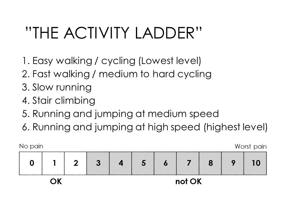 Fig 1. Activity Ladder