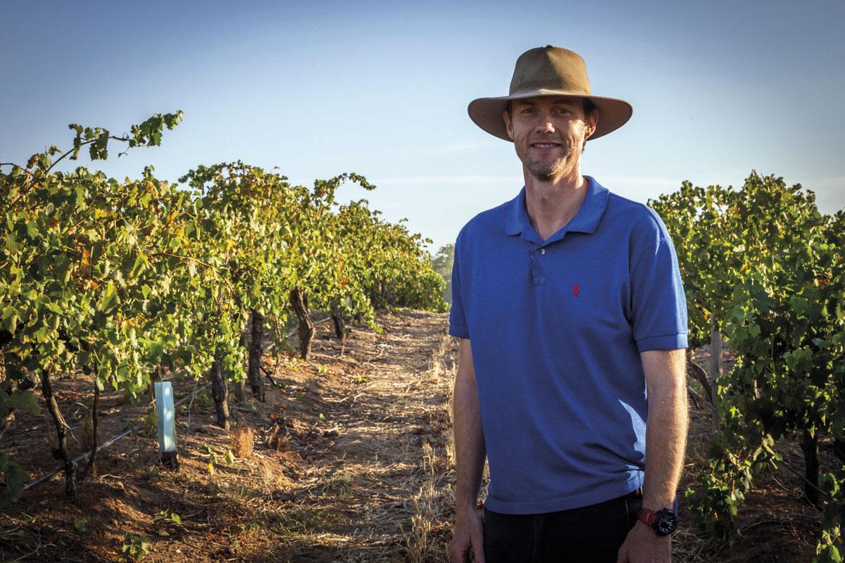 Scott Hazeldine, Chief Winemaker